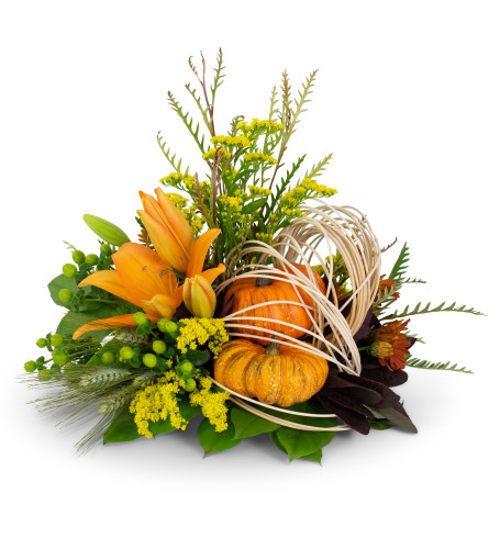 Abstract Cornucopia by Country Gardens