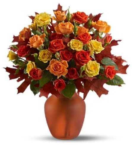 Amber Roses TF
