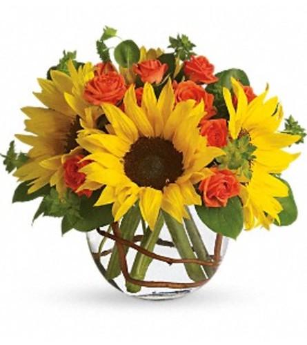 Sunny Sunflowers TF