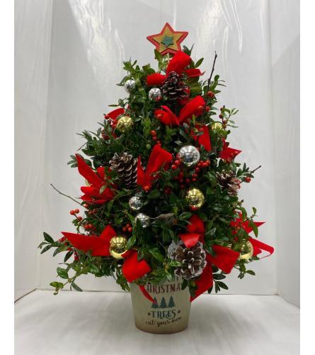 "Boxwood Tree 22"""
