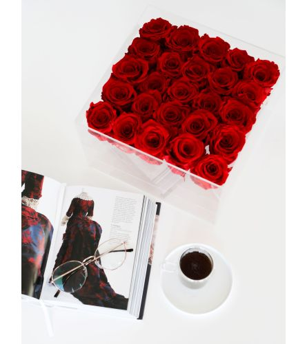 Preserved deluxe 25 Roses in clear box