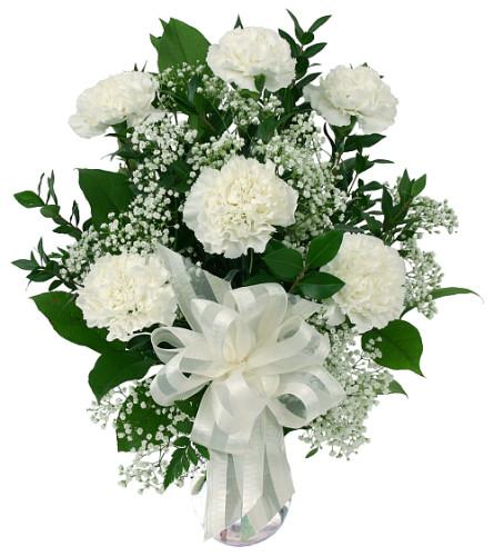 6 White Carnations 2019