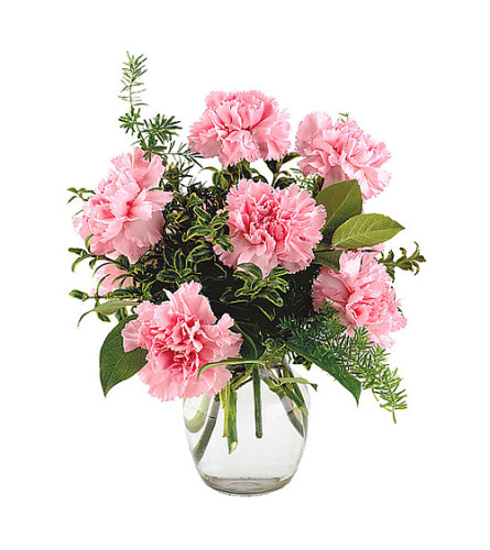 Pretty in Pink Carnations