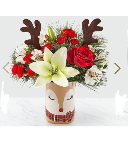 Rudolph's Surprise