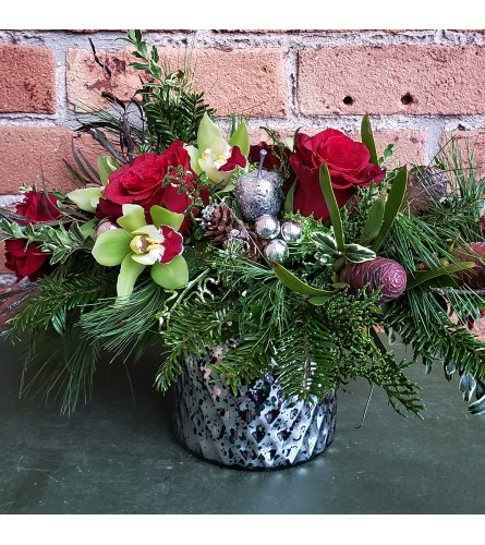 Holiday Orchid Delight