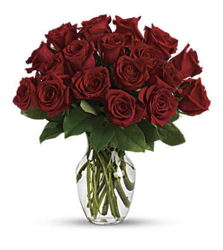 The Enduring Passion - 12 Red Roses