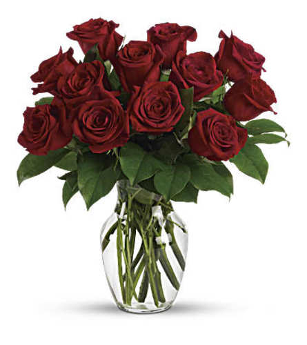 Christmas special red roses