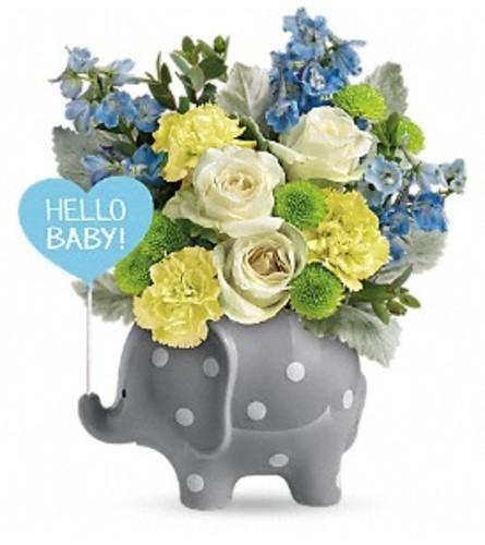 Teleflora Hello Sweet Baby - Blue