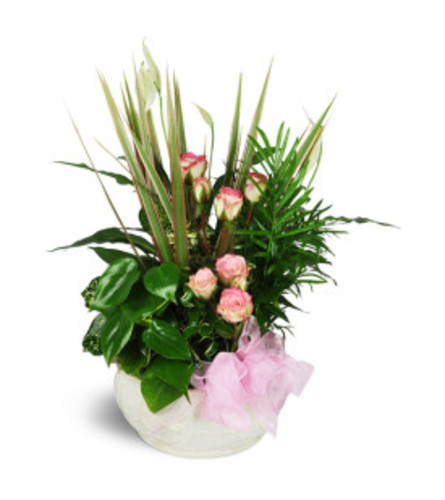 sweet memories planter