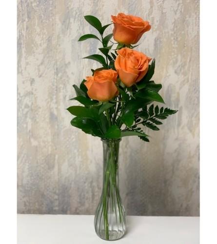 Bud Vase-Orange Roses