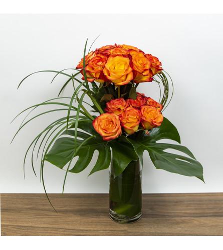 Exotic Rose Display