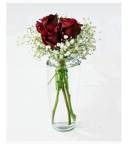 Bud Vase-Red Roses & Babies Breath (no foliage)