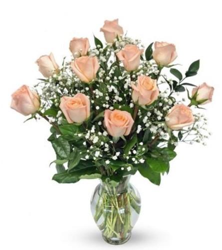 1 Dozen Peach Roses