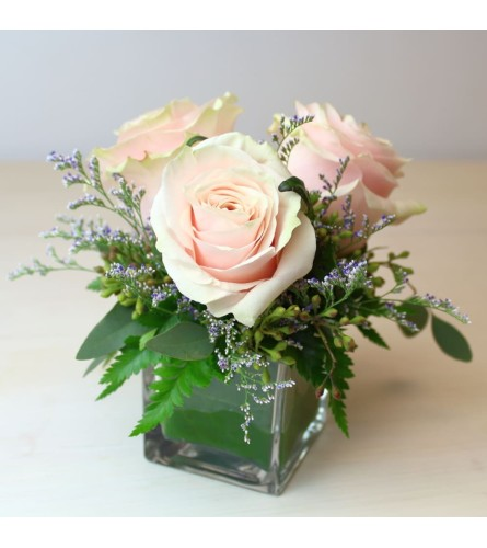 3 Pink Roses in a small cube