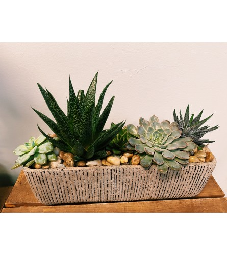 Rectangular Succulent Planter