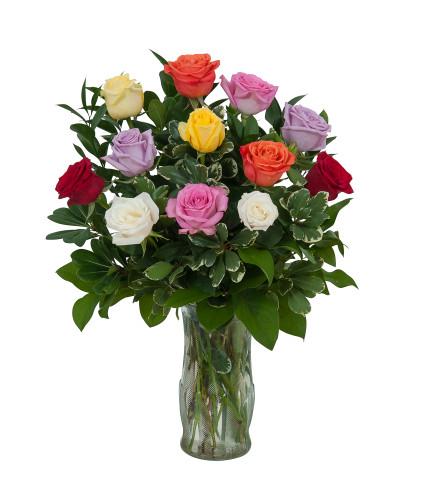 1 Dozen  Roses Assorted