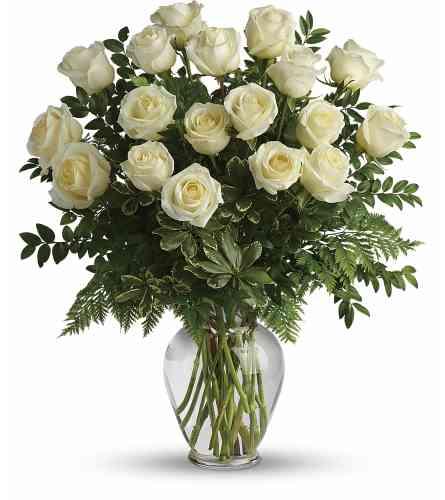 Pure Joy Roses