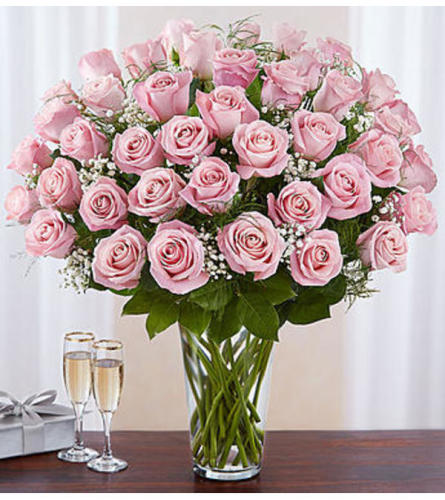 60 Pink Roses Arranged