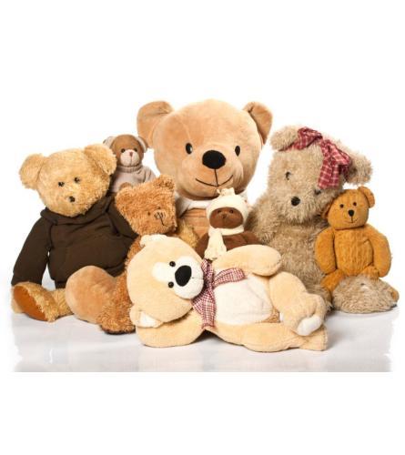 Teddy & Companies