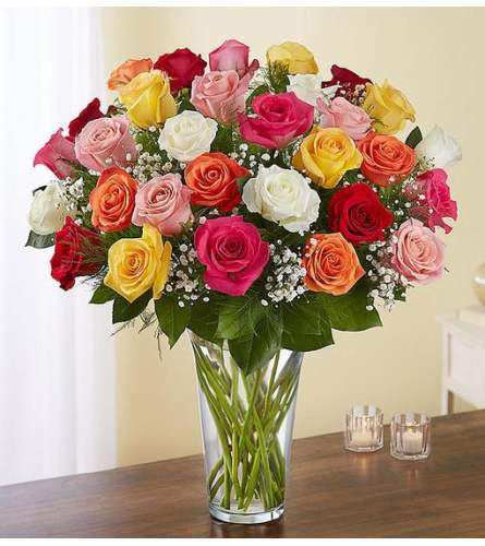 Long Stem Multicolor Roses