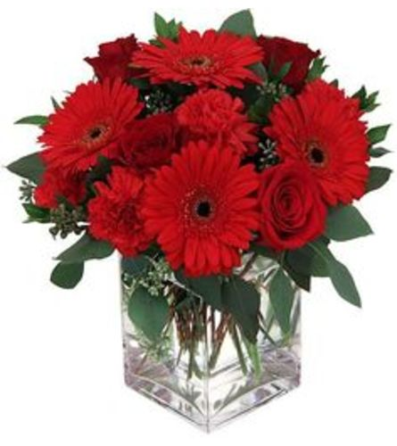 Be My Valentine BF