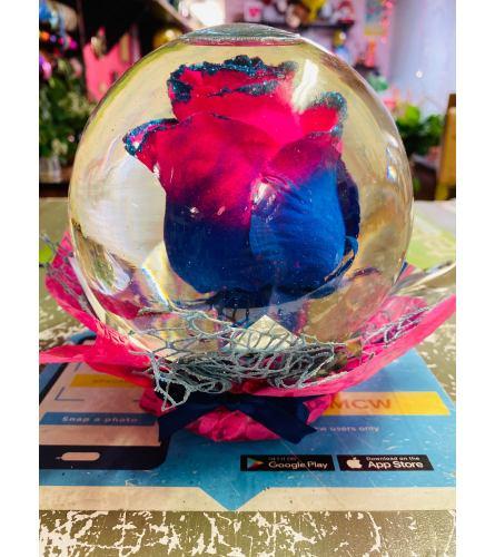 Rose In Glass Globe