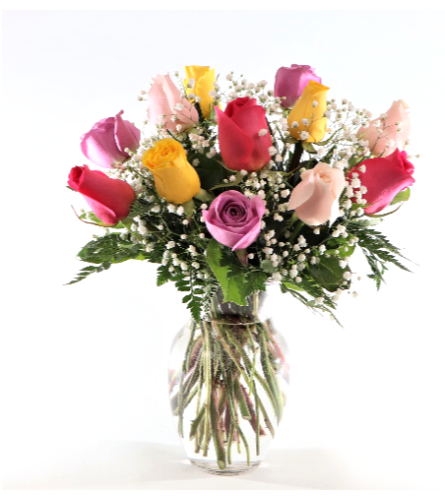 Dozen Coloured Roses