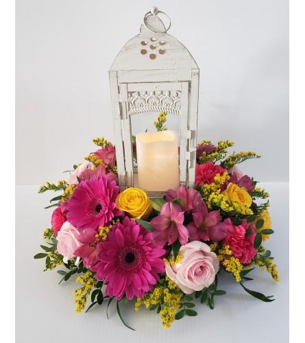 Lantern arrangement Pinks