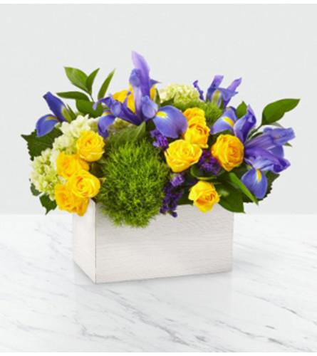 FTD FieldsOf Iris