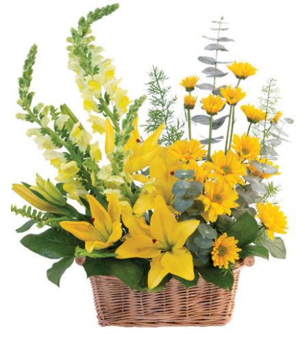 FSN-CHEERFUL YELLOW BASKET