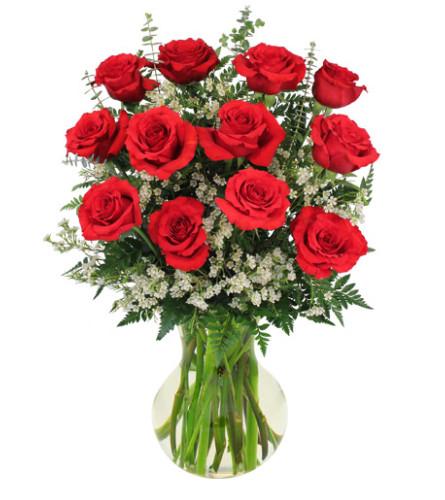 FSN-RED ROSES AND WHISPY WHITES