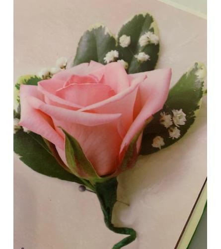 BOUTINEER PINK ROSE