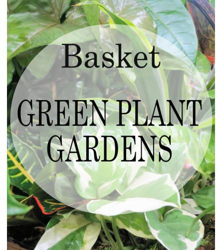 Planter-Florist's Choice in Basket