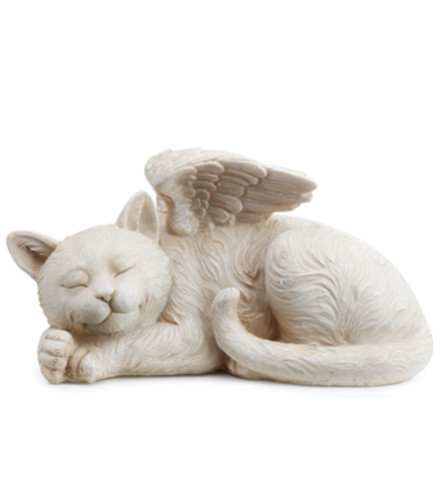SLEEPING ANGEL CAT