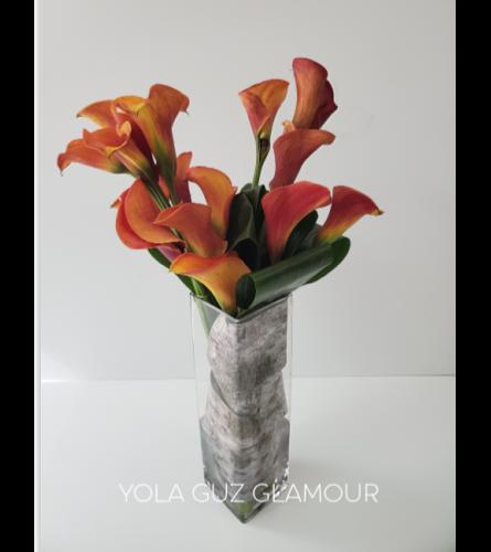 Contemporary Callas