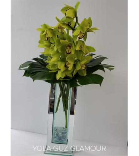 Modern Orchids Glamour