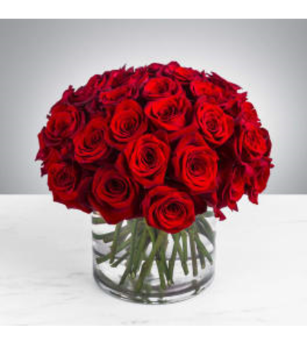 Abundant red love