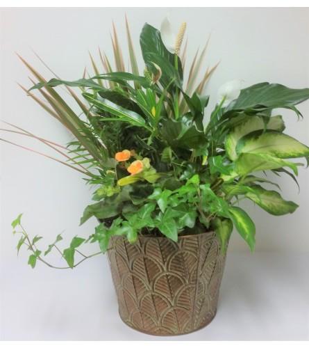 Planter Garden for Healing