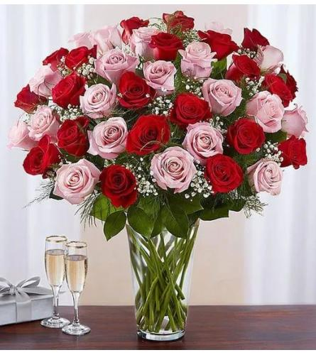 60 Long Stem Pink And Red Roses Luxury Vase