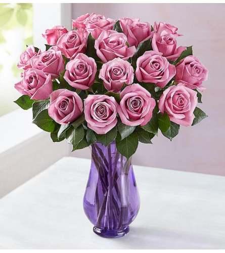 2 Dozen Passionate Purple Roses