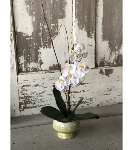 Silk Orchid Pot
