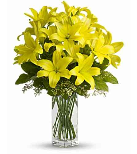 Sunny Lilies