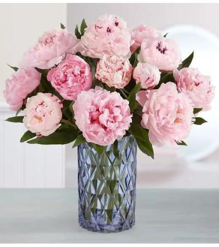 Pink Pure Elegant Peonies