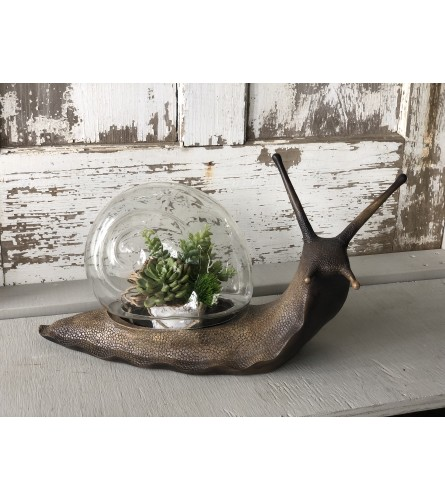 Copper Snail Terrarium