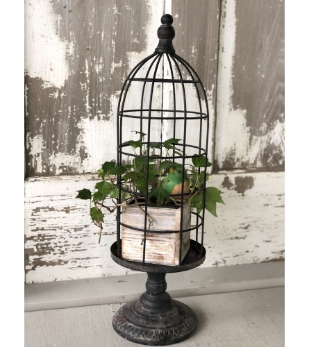 Bird in Cage with Ivy