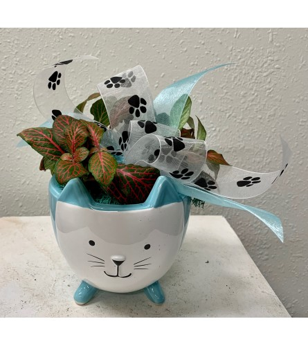 Kitty Kit-Kat Planter