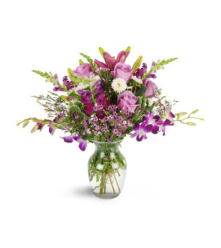 Purple Heaven Orchids