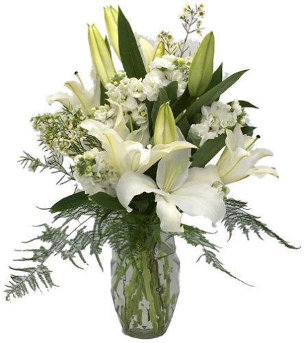 Lilies of Glory