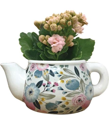Darcy Mini Teapot with Plant