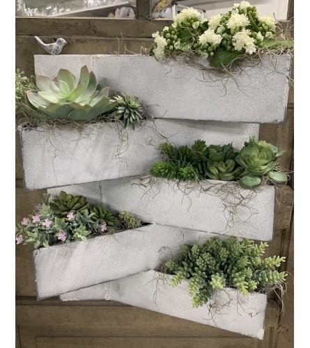 Succulent Wall Hanger